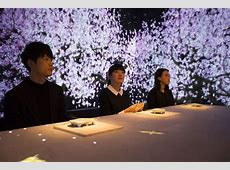 An Immersive, Multi sensory Dining Experience at a Ginza