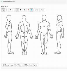 Blank Body Chart Chart Parts For Creating A Chart Template App