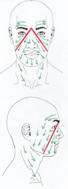 Facial Techniques Chart Dry Brushing Very Simple Skin Care Waste Not