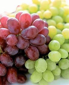uva da tavola uva da tavola di canicatt 236 igp corriere della sera