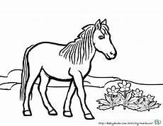 pferdebilder ausmalen pferdek 246 pfe ausmalbilder