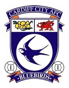 cardiff city iphone wallpaper free icon 50 free icon for commercial