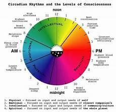 Circadian Rhythm Chart 53 Best Images About Circadian Rhythm On Pinterest