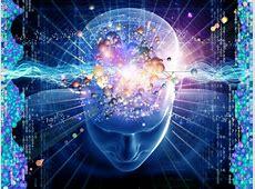 Technical Indicator Overload ? Brain Explosion :TraderRach