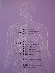 Spinal Pressure Points Chart Back Relief Acupressure Points And Self Healing