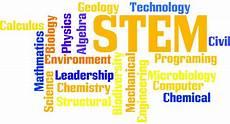 What Are Stem Degrees Degree Programs
