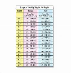 Weight Chart For Height Height Weight Chart Template 11 Free Word Excel Pdf