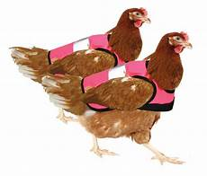 chicken clothes pink high vis chicken jacket pack chicken clothing