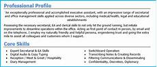 Cvs Examples For Personal Profile Good Example Of Cv Personal Profile Cv Personal Profile