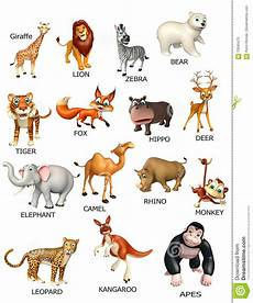 Animal Chart For Kindergarten Wild Animal Chart Stock Illustration Illustration Of