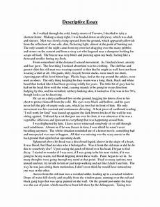 Examples Of Descriptive Essay Astounding Descriptive Essay Example About A Place