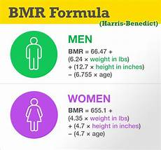 Bmr Chart For Bmr Formula Basal Metabolic Rate