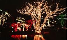 Professional Christmas Tree Lights 2018 Winter Blast Holiday Tree Lighting Live Music