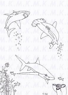 ausmalbild haie am riff meer handgemalt in 2020