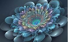 flower abstract 4k wallpaper flower hd wallpaper background image 1920x1200 id