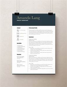 Professional Resume Word Template Modern Resume Template Professional Resume Template Word