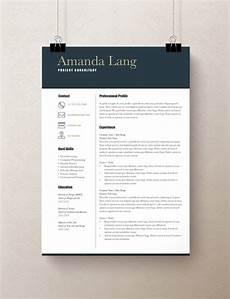 Modern Professional Resume Template Modern Resume Template Professional Resume Template Word