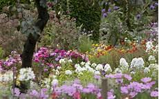 Flower Wallpaper Garden by Flower Garden Backgrounds Wallpaper Cave