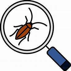 get rid of pests with help from the experts at pests org