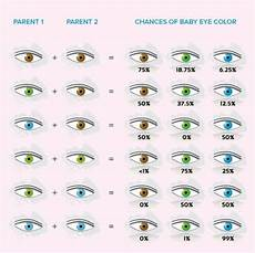 What Will My Baby Be Chart What Color Eyes Will Baby Have Mishkanet Com