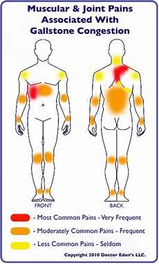 Referred Chart Gallbladder Detox Has Moved