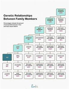 Cousin Chart Calculator How To Calculate Cousinhood Famlii