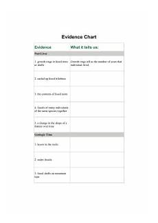 Fossil Record Chart Stories From The Fossil Record Evidence Chart Key