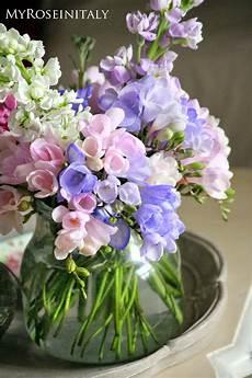 immagini piã di fiori fiori di primavera immagini