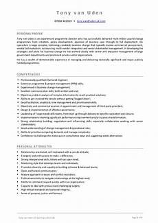 What Is Career Summary In Cv Tony Van Uden Cv Summary 2013 08