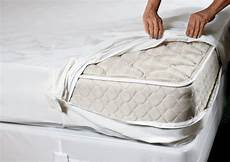 bed bug mattress covers what you need to stacyknows