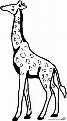 Ausmalbilder Drucken Giraffe Ausmalbilder Giraffe Kostenlos Malvorlagen Zum