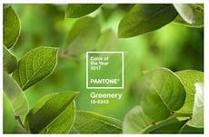 Color Of The Year 2017 Pantone Pantone S Color Of 2017 Greenery