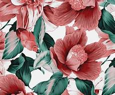 flower wallpaper we it 779 images about wallpapers on we it see more