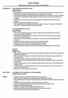 Pm Resumes Ba Pm Resume Samples Velvet Jobs