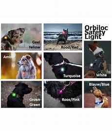 Orbiloc Safety Light Review Orbiloc Safety Light Dual Purrfect Design