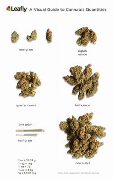 What Does 1 8 Look Like On A Pie Chart Visual Guide To Cannabis Quantities By Ounce Amp Gram Leafly