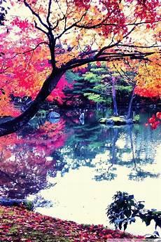 iphone x wallpaper hd japan fall in japan ultra hd desktop background wallpaper for 4k