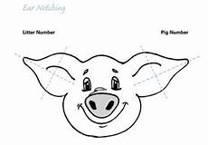 Ear Notch Pig 31 Pig Ear Notching Worksheet Worksheet Resource Plans