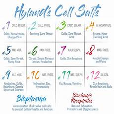 12 Cell Salts Chart Cell Salts Homeopathy Medicine Homeopathy Treatment
