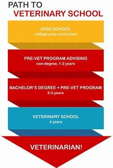 How Many Years Of School To Become A Dentist Pre Veterinary Medicine Nebraska Pre Vet