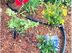 Drip Irrigation   Frisco, TX   Official Website