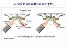 Surface Plasmon Resonance Ppt Surface Plasmon Resonance Based Binding Techniques