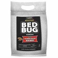 harris 80 oz resistant bed bug powder with applicator
