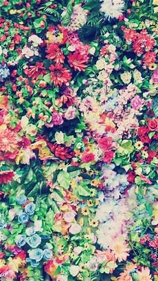 Iphone 6 Wallpaper Floral by 727 Best Iphone Wallpaper Images On Iphone 5