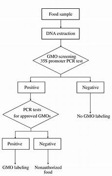 Chart Method Pcr Example Flow Chart Of Pcr Method For Detection Of Gmo In Foods
