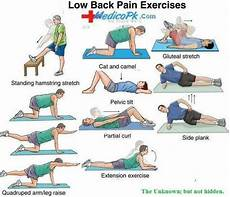 Lower Back Stretches Chart Stretches To Relieve Lower Back Insight Pinterest