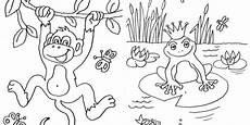 ausmalbilder tiere im wald zum ausdrucken malbild