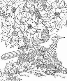 Malvorlagen Tiere Und Natur Malvorlagen Natur Und Tiere Dekoking 6 Pinteres