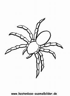Malvorlagen Spinnen Ausmalbild Spinne 2 Zum Ausdrucken