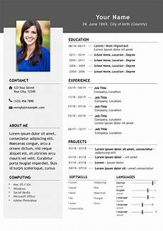 Cv Format In English Provide A Professional Cv In English Or German By Clemenskieks